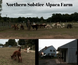 Northern Solstice Alpaca Farm
