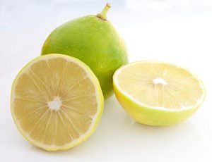 bergamot essential oil - Citrus bergamia